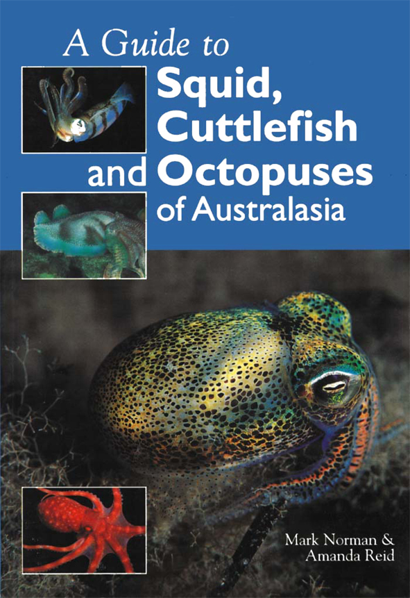 The cover image featuring a brightly coloured metalic toned octopus, again
