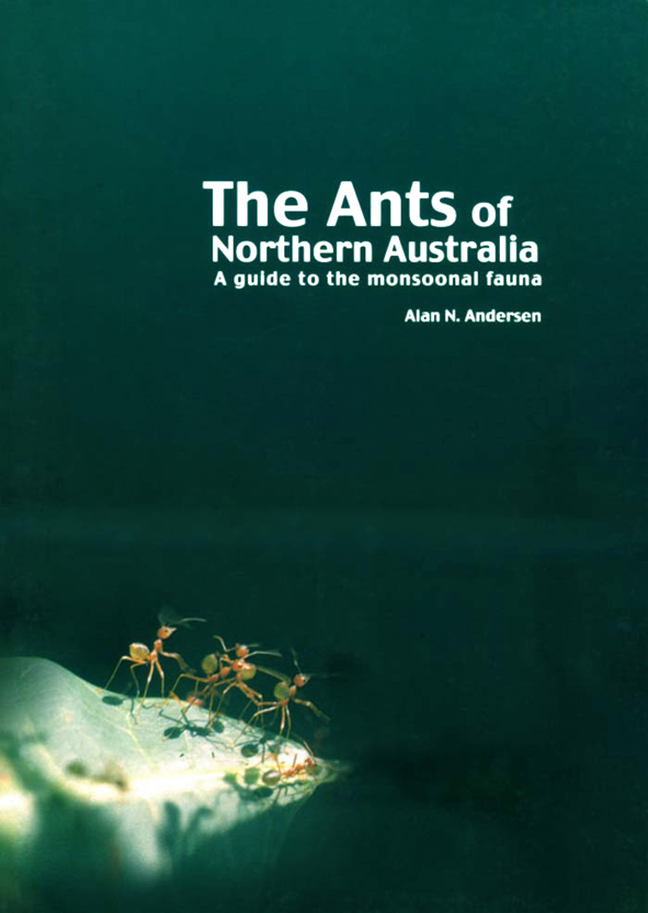 The cover image featuring four red coloured ants on a stone ground surroun
