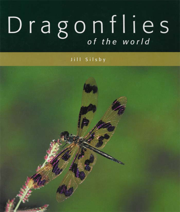The cover image featuring a black and clear winged dragonfly with its wing