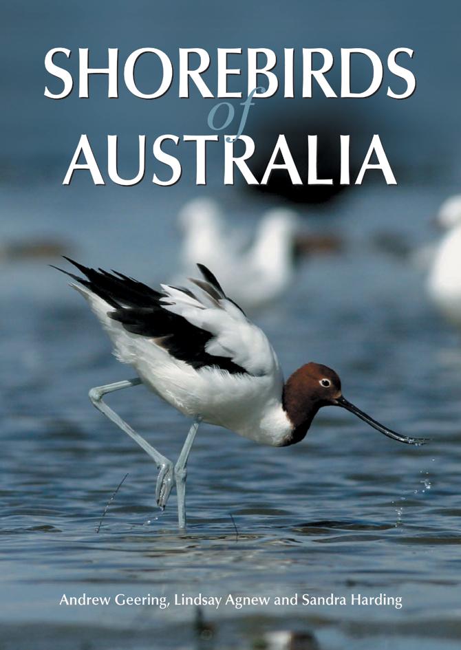 Shorebirds of Australia Andrew Geering Lindsay Agnew