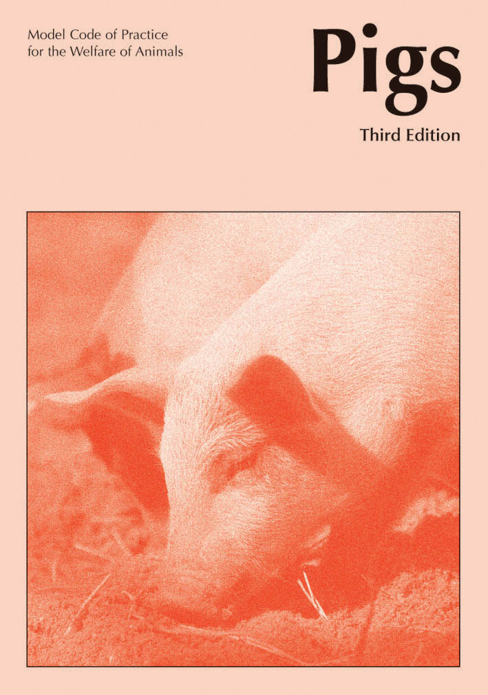 The cover image of Model Code of Practice for the Welfare of Animals: Pigs