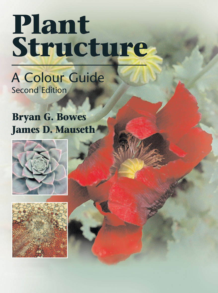 The cover image of Plant Structure, featuring a half opened red flower wit