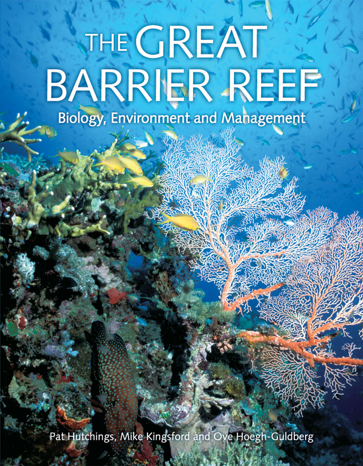 The cover image of The Great Barrier Reef, featuring brightly coloured cor