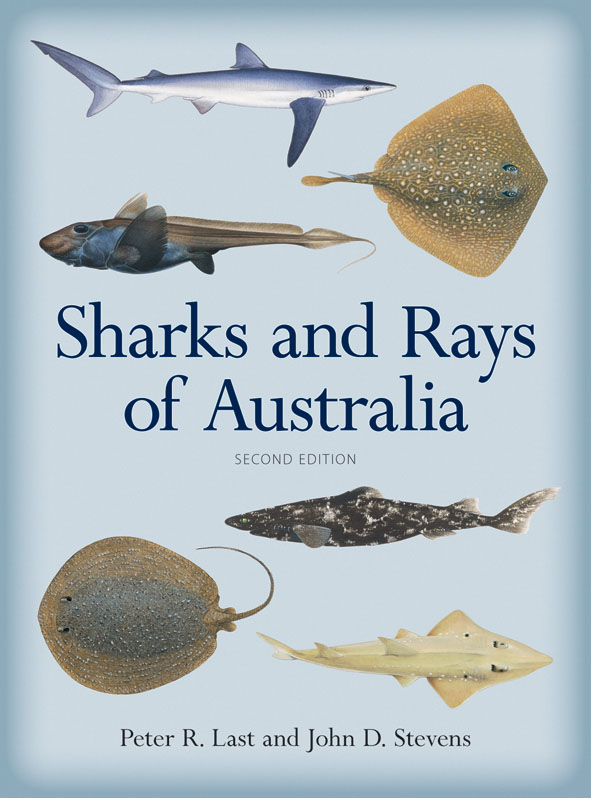 The cover image of Sharks and Rays of Australia, featuring images of vario