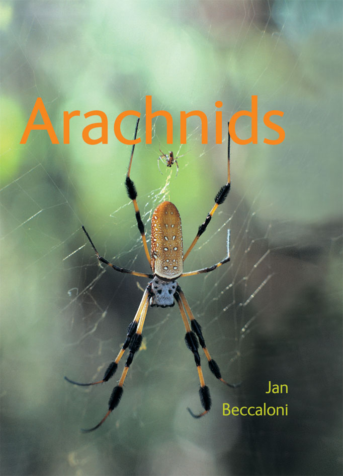 The cover image featuring a large yellow spider with long black stripped l