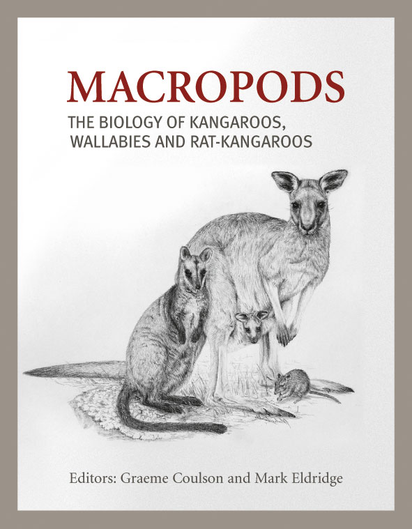 The cover image of Macropods, featuring a kangarood with a joey in its pou