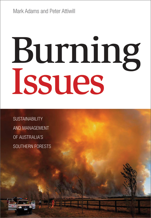 The cover image of Burning Issues, featuring billowing orange and grey smo