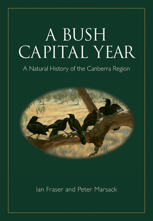 The cover image of A Bush Capital Year, featuring five black birds resting