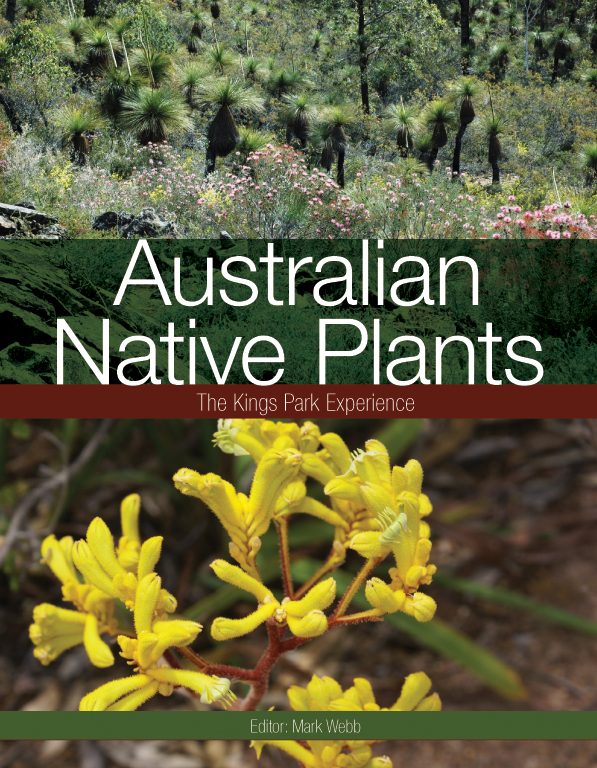 Native Australian Plants And Trees Australian Native Plants