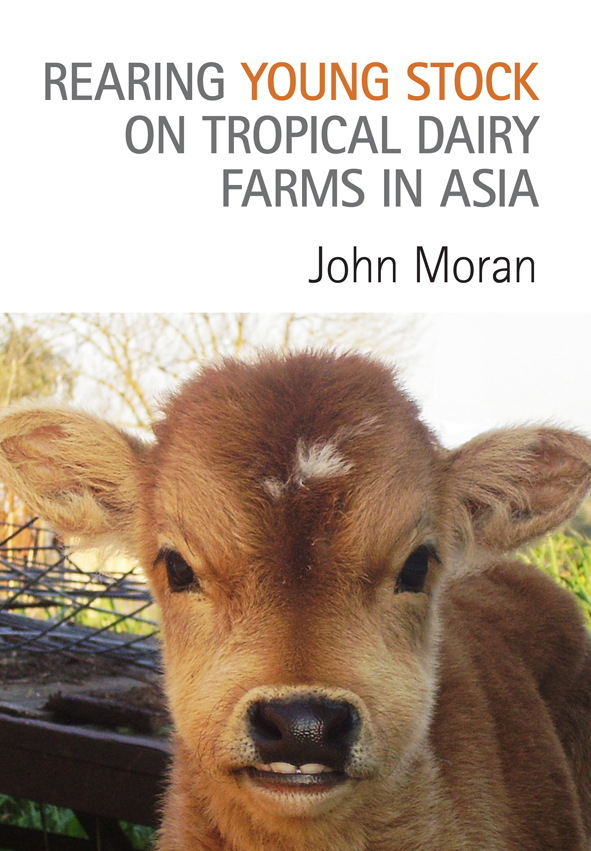 The cover features a close up photograph of a carmel brown calf with woode