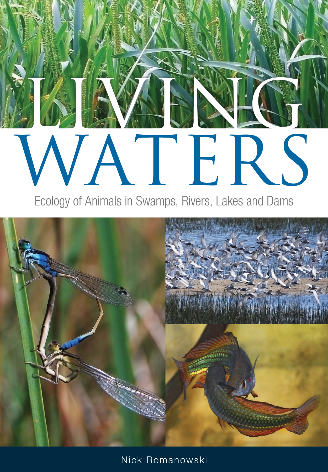 The cover image of Living Waters, features four photogarphs, the top of a