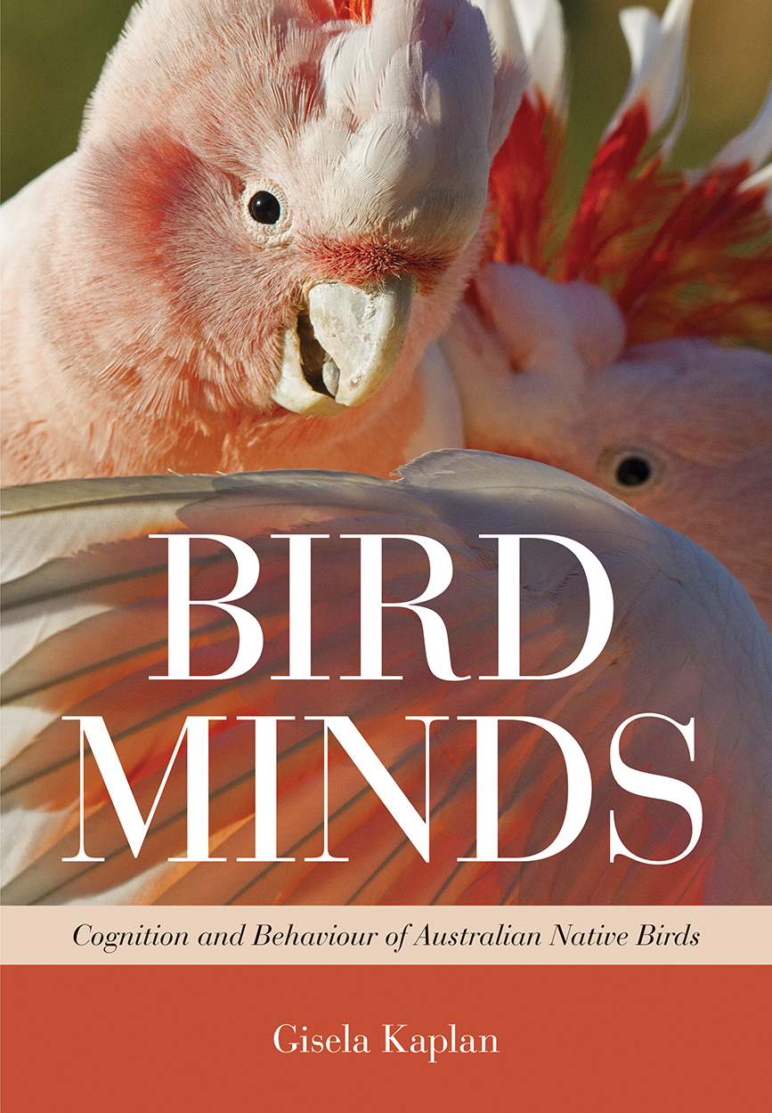 Close up image of two pink Major Mitchell cockatoos. The title is overlaid