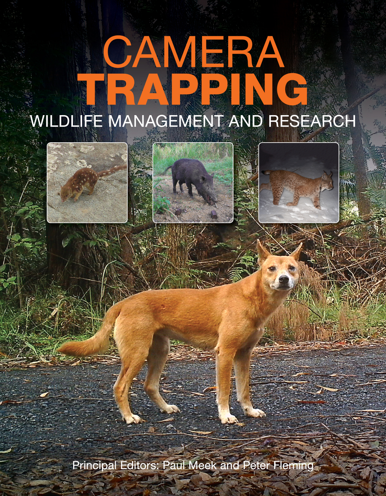 The cover has four photographs of animals captured by camera trapping: a b