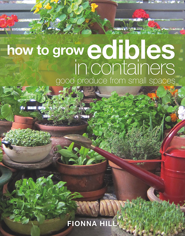 Cover image of How to Grow Edibles in Containers featuring a small balcon
