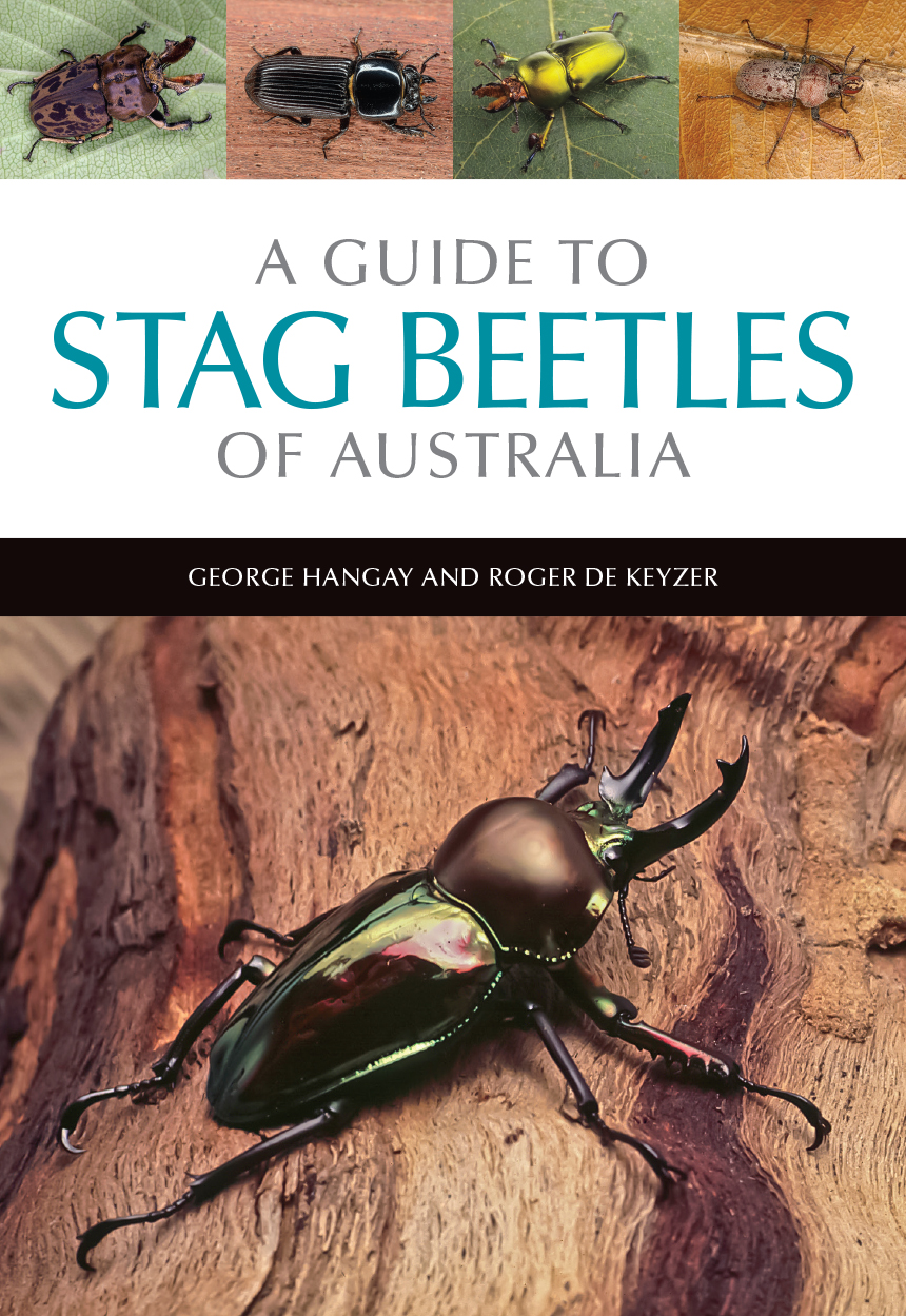cover of A Guide to Stag Beetles of Australia