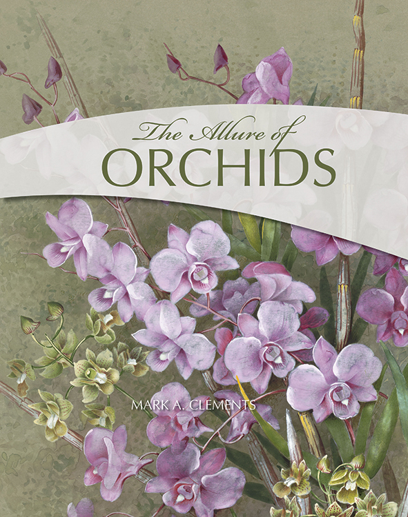 cover of The Allure of Orchids