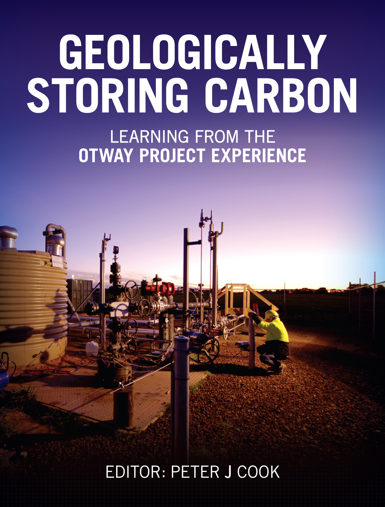 cover of Geologically Storing Carbon