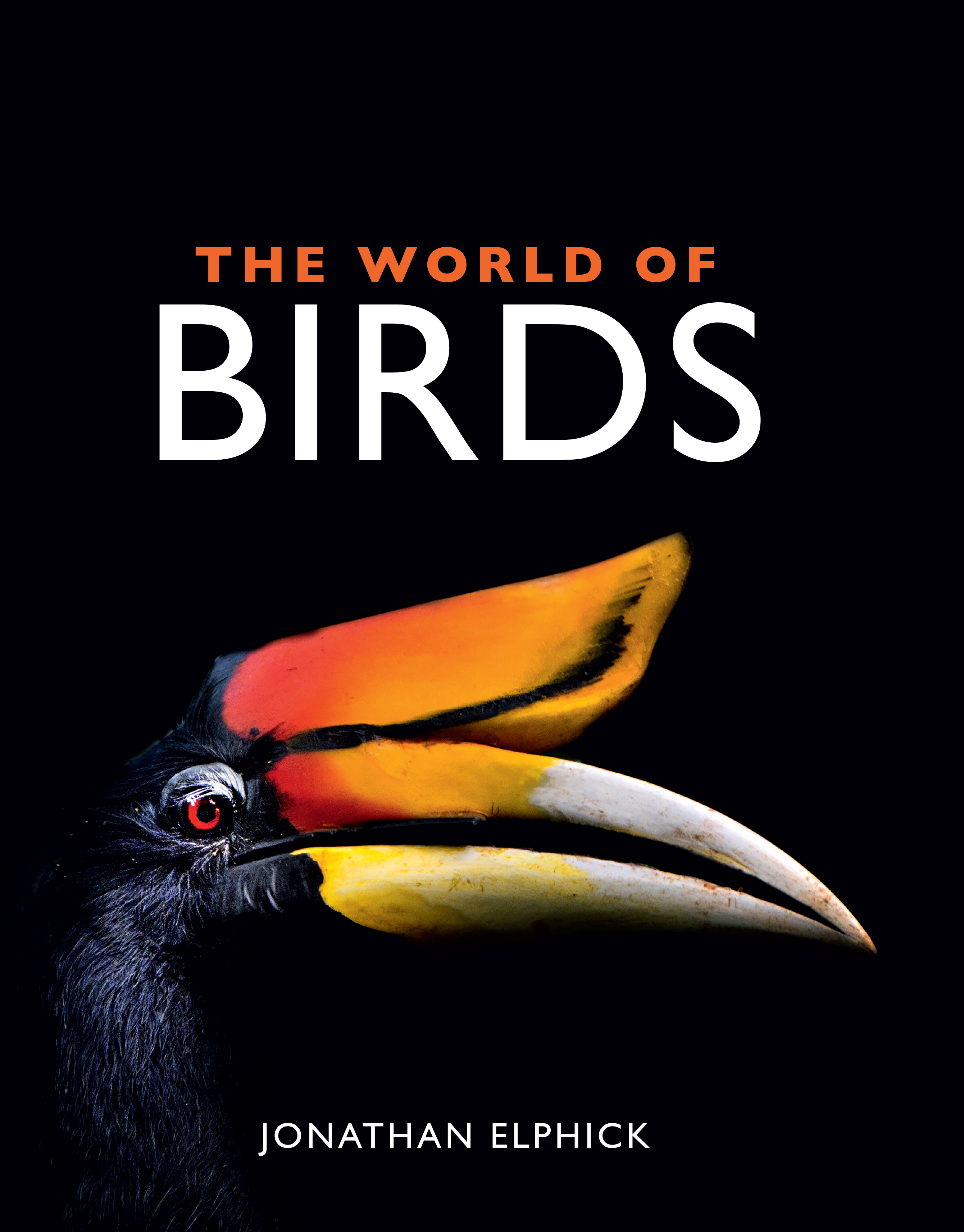 cover of The World of Birds