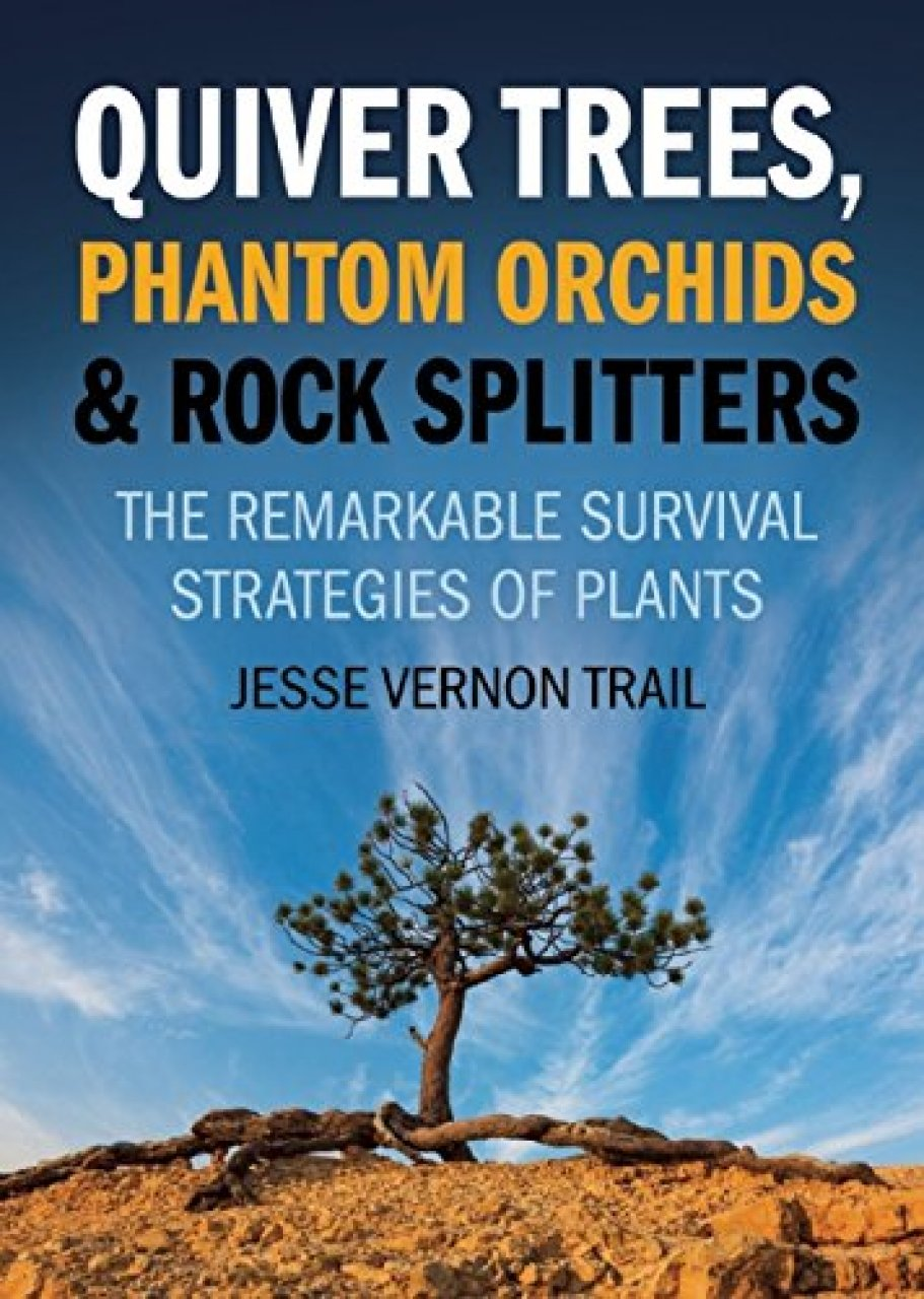 cover of Quiver Trees, Phantom Orchids and Rock Splitters
