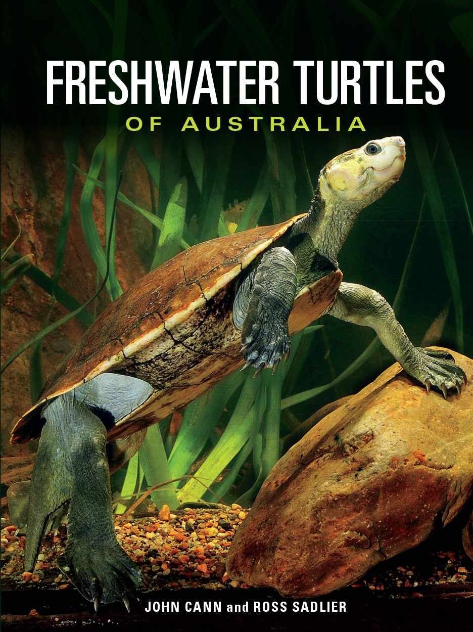 Cover image featuring green and brown turtle in diagonal position.