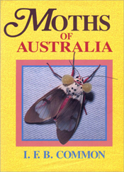 The cover image featuring a grey and blue moth, with two large yellow orbs