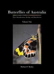The cover image featuring a side view of a red, black and yellow butterfly