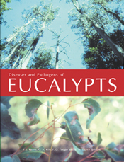 The cover image featuring a top image of a skyward view of tall gum trees,