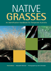 The cover image of Native Grasses, featuring square images of grasses, clo