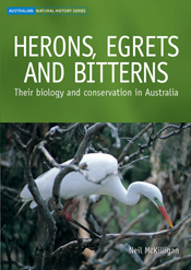 The cover image of Herons, Egrets and Bitterns, featuring a large white bi