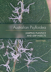 cover of Australian Psylloidea