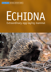 The cover image of Echidna, featuring an echidna standing in brown bracken