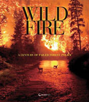 cover of Wildfire