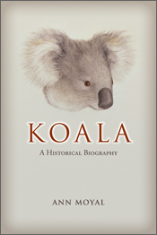 The cover image of Koala, featuring a side view of a koala head, with a pa