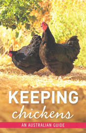 Keeping Chickens: An Australian Guide