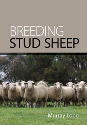 The cover image of Breeding Stud Sheep, featuring a flock of sheep looking