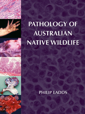 Pathology of Australian Native Wildlife