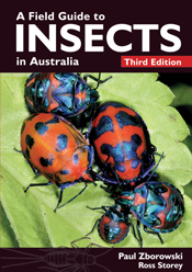 cover of A Field Guide to Insects in Australia