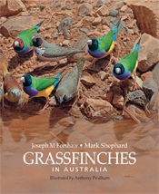 Grassfinches in Australia cover image