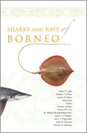 cover of Sharks and Rays of Borneo