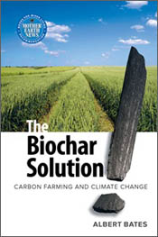 cover of The Biochar Solution