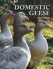 cover of Domestic Geese