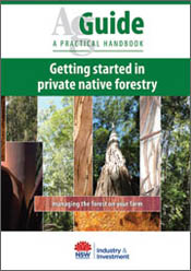 Getting Started in Private Native Forestry
