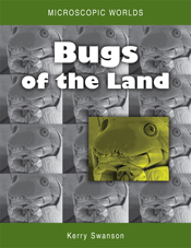 Microscopic Worlds Volume 2: Bugs of the Land cover image