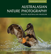 The cover image of Australasian Nature Photography, features a bat splashi