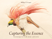 The cover image of Capturing the Essence, features a water colour illustra