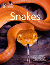 Cover image of Snakes, features a close image of a bright orange snake wit