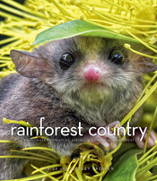 Cover image of Rainforest Country, features a close up photograph of possu
