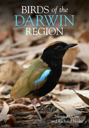 Cover image featuring a Rainbow Pitta standing on the ground surrounded by