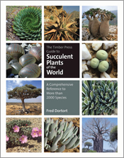 Cover image is 12 square images of  succulents, with writing in the centra