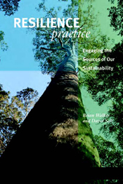 Cover is a image of a tree looking up the trunk to a clear blue sky.